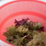 My Daily Staple Salad