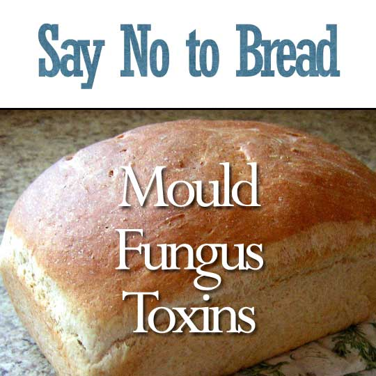Say No to Bread: Mould, Fungus and Toxins