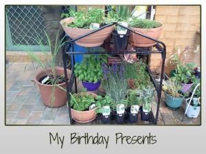 Birthday Herb Garden