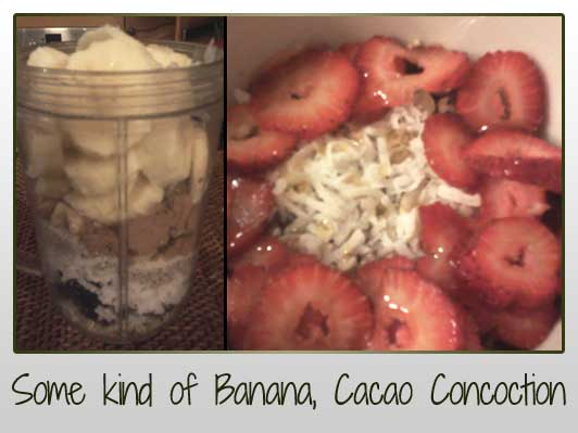 Chia Seeds, Cacao Powder, Bananas, Coconut Oil, Almond Meal, Muesli, Shredded Coconut, Hemp Seeds, Walnuts, Moringa Powder, Raisens, Blackstrap Molasses, Strawberries, Flaked Almonds