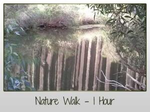 Organ Pipes Nature Trail