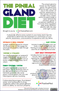 Pineal Gland Diet