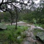 brisbane-ranges-national