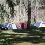 Free/Cheap Camping spots near Melbourne