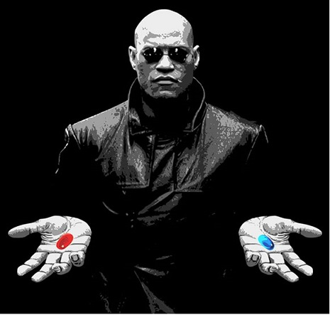 The Matrix: Consciousness and Truth