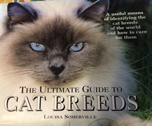 The Ultimate Guide to Cat Breeds by Louisa Somerville (Hardcover Coffee-Table book)