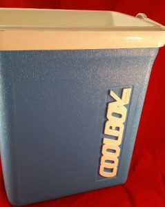Little Coolbox Esky (With Lid)